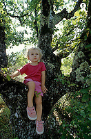 Little girl perched on a tree (Licence this image exclusively with Getty: http://www.gettyimages.com/detail/85071289 )