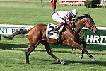 Bikini Beauty with Jose Ortiz wins MSW $80,000 for 2 year old fillies, going 7 furlongs on the turf, at Belmont Park.  Trainer Christophe Clement Owner Neil Jones
