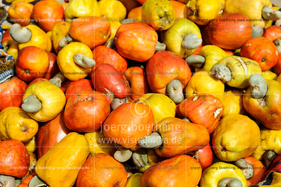 Mali, Dialakoro, market, selling of cashew fruits with nut