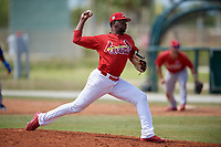 St. Louis Cardinals Frederis Parra (8) during a minor league Spring Training game against the New York Mets on March 28, 2017 at the Roger Dean Stadium Complex in Jupiter, Florida.  (Mike Janes/Four Seam Images)