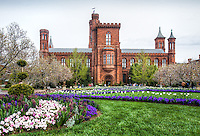 Smithsonian and the Mall