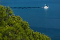 Europe/Provence-Alpes-Côte d'Azur/83/Var/Iles d'Hyères/Ile de Porquerolles:  Depuis le Fort Sainte Agathe, vue sur la grande  bleue