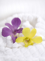 White Spa Towel with Orchids&#xA;&#xA;<br />