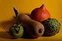 Whole, raw, kohlrabi, butternut squash, pumpkin, and a globe artichoke, on a yellow background