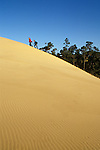 Two young men hiking up sand dune; Umpua Dunes, Oregon Dunes National Recreation Area, Oregon coast.