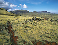 Path through deep yellow-green moss in red volcanic soil, leading towards distant hills, near Reykjavik, Icelan