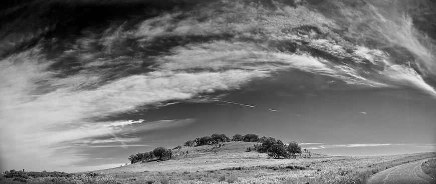 Dramatic clouds sweep across Frederick's Hill in the Pheasant Branch Conservancy in Middleton, Wisconsin. Grand Prize Winner in the 2010 Friends of Pheasant Branch Photography Contest.