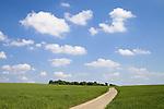 Europa, DEU, Deutschland, Nordrhein Westfalen, NRW, Rheinland, Niederrhein, Xanten, Agrarlandschaft, Fuerstenberg, Feld, Acker, Himmel, Wolken, Weg, Strasse, Kategorien und Themen, Landwirtschaft, Landwirtschaftlich, Agrar, Agrarwirtschaft, Natur, Naturfoto, Naturfotos, Naturfotografie, Naturphoto, Naturphotographie, Landschaft, Landschaften, Landschaftsfoto, Landschaftsfotografie, Landschaftsphoto, Landschaftsphotographie......[Fuer die Nutzung gelten die jeweils gueltigen Allgemeinen Liefer-und Geschaeftsbedingungen. Nutzung nur gegen Verwendungsmeldung und Nachweis. Download der AGB unter http://www.image-box.com oder werden auf Anfrage zugesendet. Freigabe ist vorher erforderlich. Jede Nutzung des Fotos ist honorarpflichtig gemaess derzeit gueltiger MFM Liste - Kontakt, Uwe Schmid-Fotografie, Duisburg, Tel. (+49).2065.677997, schmid.uwe@onlinehome.de, www.image-box.com]