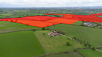 BNPS.co.uk (01202) 558833. <br /> Pic: CorinMesser/BNPS<br /> <br /> Pictured: The area which will be covered by the solar farm if the plans go ahead. <br /> <br /> Plans to build a huge solar power farm over the landscape that inspired author Thomas Hardy have been met with growing opposition.  <br /> <br /> The industrial-sized plant would see some 150,000 panels cover 190 acres of Dorset countryside.
