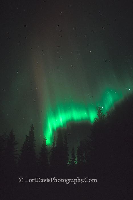 #L11 Northern Lights Alaska