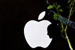 Apple mastermind Steve Jobs dies at 56