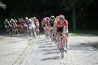 Jurgen Roelandts (BEL/Lotto-Soudal) leading the way over the cobbles<br /> <br /> 69th Halle-Ingooigem 2016 (200km)