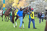 April 10, 2021:#4 Get Her Number in the Arkansas Derby at Oaklawn Park in Hot Springs,  Arkansas. Ted McClenning/Eclipse Sportswire/CSM