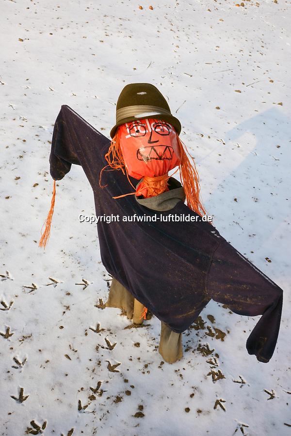 Vogelscheuche guckt in die Sonne im Schnee: EUROPA, DEUTSCHLAND, HAMBURG, (EUROPE, GERMANY), 09.11.2013 Vogelscheuche guckt in die Sonne im Schnee auf dem Billwerder Bauerhof der Familie Stubbe.