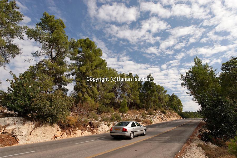 Israel, Jerusalem Mountains. Route 395 Eshtaol-Ein Karem