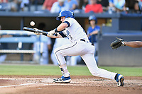 Asheville Tourists Will Golsan (8) squares to bunt during a game against the Charleston RiverDogs at McCormick Field on August 16, 2019 in Asheville, North Carolina. The Tourists defeated the RiverDogs 12-3. (Tony Farlow/Four Seam Images)
