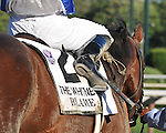 8.7.10 Blame after winning the Whitney