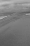 Little Sahara Kangaroo Island South Australia Photo Taken on top of Highest Peak Very Overcast Day Photographed in Black & White