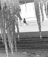 Cold Florida Winter, December 1989