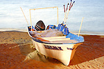 """The panga is the Central American version of a skiff. The term """"panga"""" was used initially for any small boat other than dugout canoes. Today it is commonly used as a fishing boat."""
