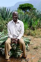 TANZANIA Tanga, Usambara Mountains, Sisal farming and industry, D.D. Ruhinda & Company Ltd., Mkumbara Sisal estate, farm worker harvest Sisal leaves / TANSANIA Tanga, Usambara Berge, Sisal Anbau und Industrie, D.D. Ruhinda & Company Ltd., Mkumbara Sisal Estate, Landarbeiter bei Ernte der Sisal Blaetter, Farm Manager Khalidi Mgundo