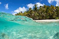 Split level Little Cinnamon Bay<br /> Virgin Islands National Park<br /> Cinnamon Bay<br /> St. John<br /> US Virgin Islands