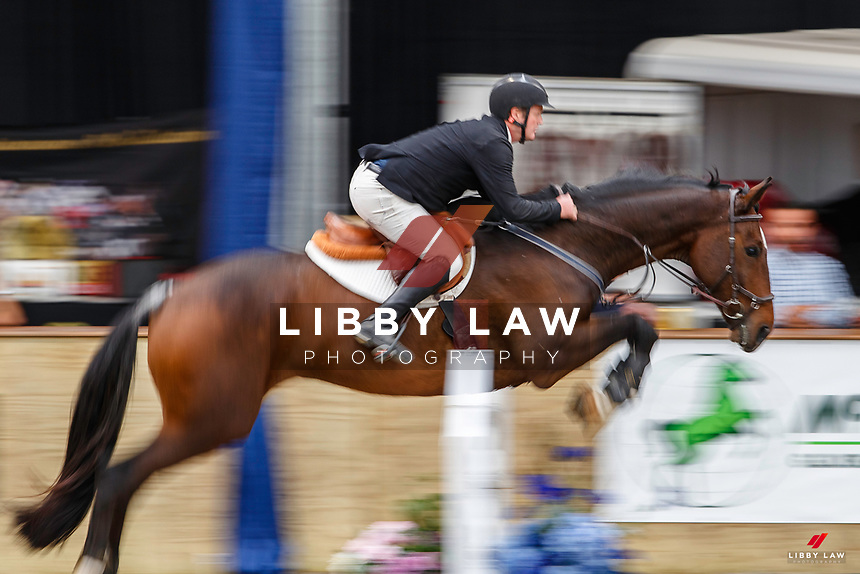 NZL-Glen Beal rides All Expenses Of Renton. Class 23: Fiber Fresh Horse 1.40m Ranking Class. 2021 NZL-Easter Jumping Festival presented by McIntosh Global Equestrian and Equestrian Entries. NEC Taupo. Saturday 3 April. Copyright Photo: Libby Law Photography