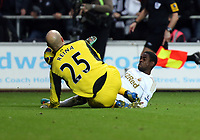 Sunday, 25 November 2012<br /> Pictured: Nathan Dyer of Swansea (R) clashes against Pepe Reina goalkeeper of Liverpool (L)<br /> Re: Barclays Premier League, Swansea City FC v Liverpool at the Liberty Stadium, south Wales.