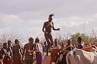 Hamer bull jumping ceremony in Omo valley Ethiopia