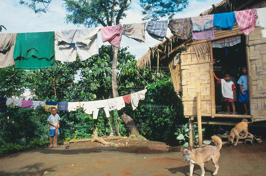 Philippines. Negros Island. Province of Negros Occidental, located in the  Western Visayas region. Barangay (village) La Carlotta. Daily life. Clean washed clothes are drying on a rope. Two dogs. Children on the doorstep of their wood house.  © 1999 Didier Ruef