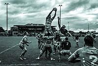 170806 Mitre 10 Cup Preseason Rugby - Wellington v Manawatu