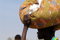 Tanzania, organic cotton project biore of swiss yarn trader Remei AG in Meatu district, women carry cotton after harvest to the village / Tansania , biore Biobaumwolle Projekt der Schweizer Remei AG in Meatu, Frauen tragen Biobaumwolle nach der Ernte ins Dorf
