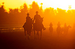 October 29, 2019 : Sunrise during morning works in preparation for the Breeders' Cup World Championships at Santa Anita Park in Arcadia, California on October 29, 2019. Carolyn Simancik/Eclipse Sportswire/Breeders' Cup/CSM