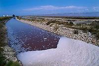 Saline Margherita di Savoia in Puglia sono le più grandi di Italia, vendute alla Francia