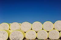 TURKEY, Kesik, near Menemen, Genel Pamuk ginning factory, processing of harvested conventional cotton, seperating of fibre and seed and pressing and packaging in cotton bales to supply the turkish textile industry, harvested cotton in round module / TUERKEI, Kesik, bei Menemen, Entkernungsfabrik Genel Pamuk, die konventionelle Baumwolle wird hier weiter verarbeitet, es werden Faser und Baumwollsamen sowie Stiel- u. Blattreste getrennt und die Baumwollefaser in Ballen gepresst und verpackt und an die tuerkische Textilindustrie geliefert, geerntete Baumwolle im Rundballen