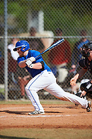 Illinois College Blueboys catcher Eli Fox (10) at bat during a game against the Edgewood Eagles on March 14, 2017 at Terry Park in Fort Myers, Florida.  Edgewood defeated Illinois College 11-2.  (Mike Janes/Four Seam Images)
