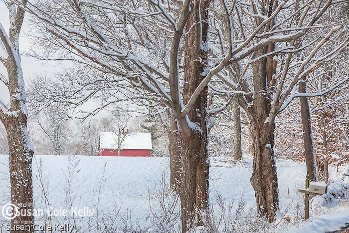 Winter at Appleton Farms in Ipswich, Massachusetts, USA
