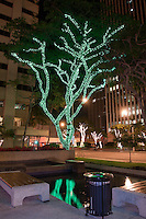 A water feature in Bishop Square reflects a tree decorated with green Christmas lights, downtown Honolulu, O'ahu.