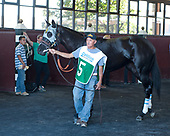 Cotillion Stakes - It Tiz Well