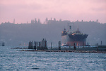"""Coos Bay, Oregon, Marine Trade, specialized bulk carrier or """"chip ship"""" built to transport the pulp wood products to the Far East enters Coos Bay, tugboats assist up the Coos River, Pacific Northwest, USA"""