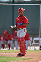 Philadelphia Phillies catcher Edgar Cabral during a Minor League Spring Training game against the Toronto Blue Jays on March 29, 2019 at the Carpenter Complex in Clearwater, Florida.  (Mike Janes/Four Seam Images)