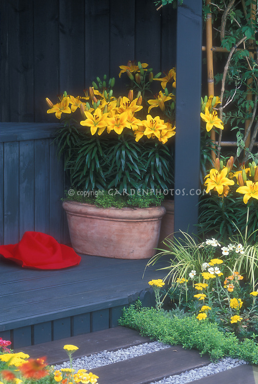 Lilies in terracotta pot planter on gazebo deck, with red gardening hat, Achilllea yarrow, thymes, pathway in wood and pebbles, vine climbers with bamboo pole supports, ornamental grass