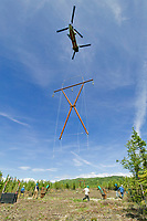 """Boeing 234 """"Chinook,"""" The world's most efficient heavy-lift helicopter, capable of carrying 28,000 pound loads, lifts power line towers to remote location in the construction of the GVEA Northern Intertie"""