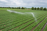 Irrigating salad potates with a 72 meter boom