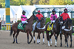 April 10, 2021:#5 Concert Tour in the Arkansas Derby at Oaklawn Park in Hot Springs,  Arkansas. Ted McClenning/Eclipse Sportswire/CSM