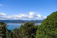 CentrePort in Wellington, New Zealand on Wednesday, 28 April 2021. Photo: Dave Lintott / lintottphoto.co.nz
