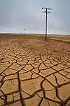 Mud cracks in Namib Desert near Aub, Diamanten Sperrgebiet, mud cracks occurred after unusual winter rains rains and subsequent drought