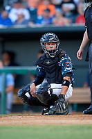 Jacksonville Jumbo Shrimp catcher Rodrigo Vigil (6) looks into the dugout during a game against the Mobile BayBears on April 14, 2018 at Baseball Grounds of Jacksonville in Jacksonville, Florida.  Mobile defeated Jacksonville 13-3.  (Mike Janes/Four Seam Images)