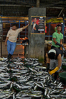"When the trawlers arrive early morning at the main fish port in Navotas, Manila, Philippines. Navotas is a city in the Philippines located north of Manila. It is dubbed as the ""Fishing Capital of the Philippines"" because the livelihood of many of its residences were derived directly or indirectly from fishing and its related industries"