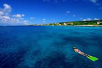 young woman, snorkeling, Bonaire, Netherlands Antilles, Caribbean Sea, Atlantic Ocean
